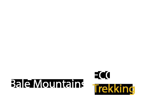 Bale Mountains Eco Trekking